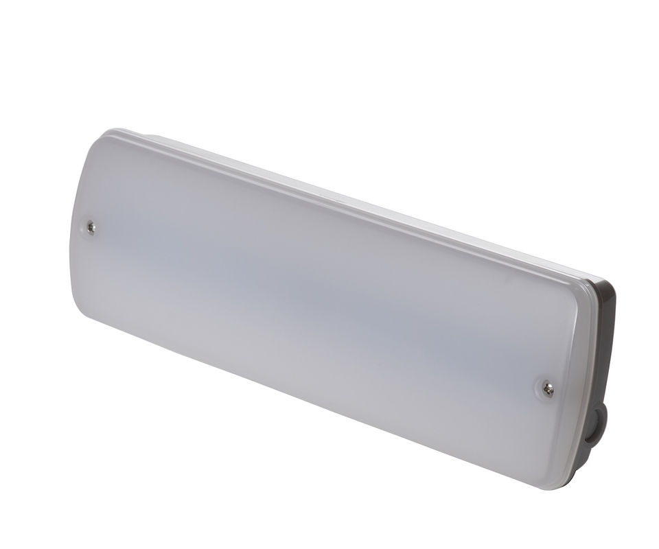 Maintained / Non Maintained 3W Waterproof Emergency Light With 3 Years Warranty